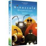 Achetez les DVD des saisons de Minuscule en cliquant ici !
